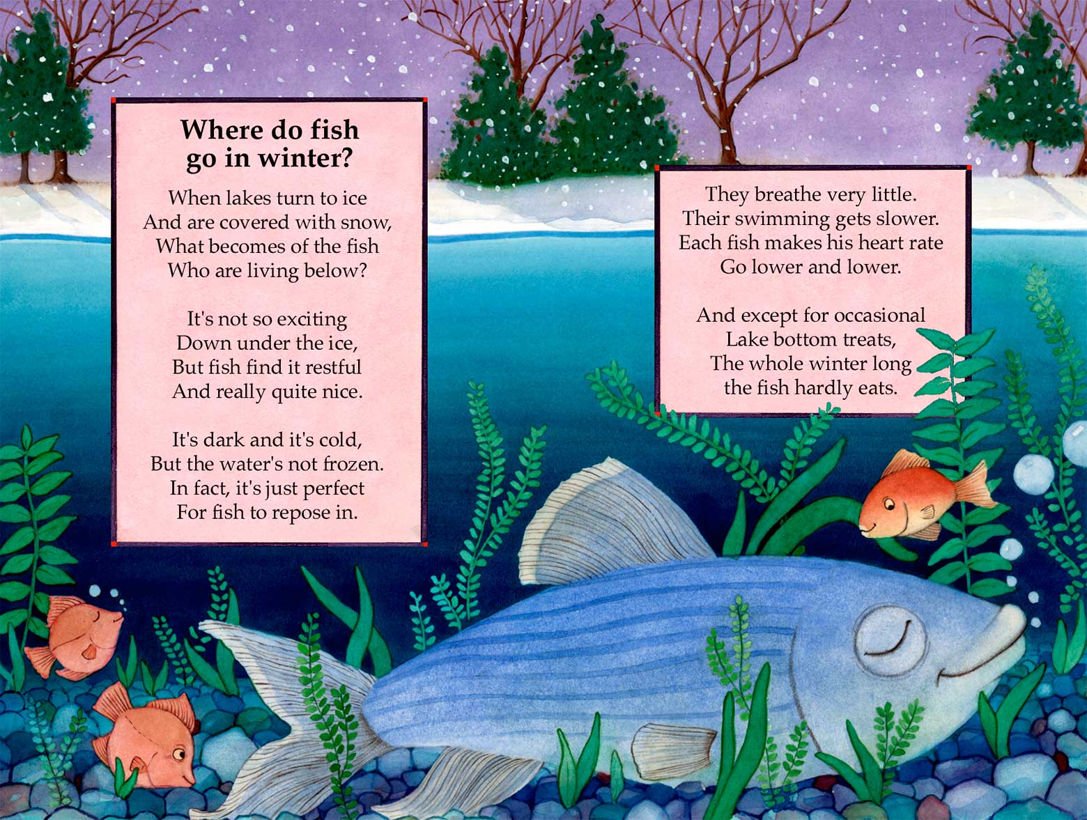Where Fish Go in Winter by Laura J. Bryant